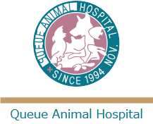 クウ動物病院